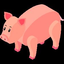 Pork111